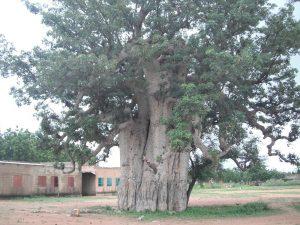 Association Lekma- le Burkina Faso Pays des homme sintègres